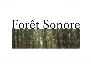 Forêt Sonore